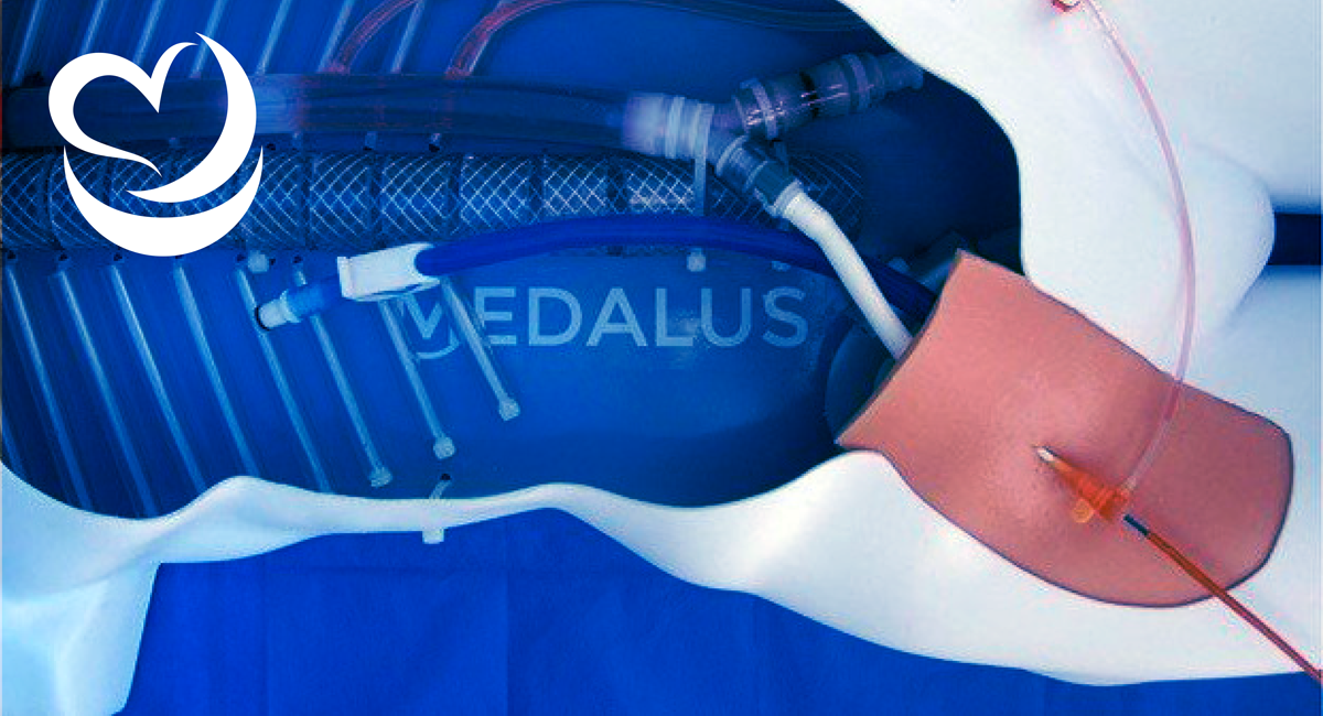 Train Physicians for Real-Life Bleeding Scenarios with Medalus REBOA Task Trainer