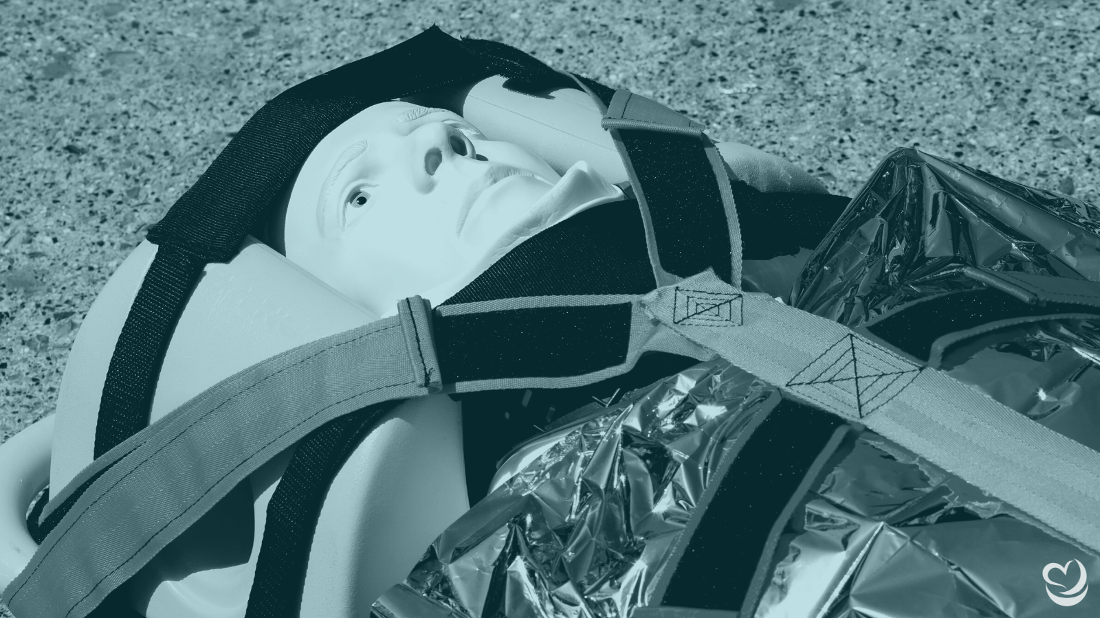 Enhance your Extrication Training with Laerdal Extri Kelly!